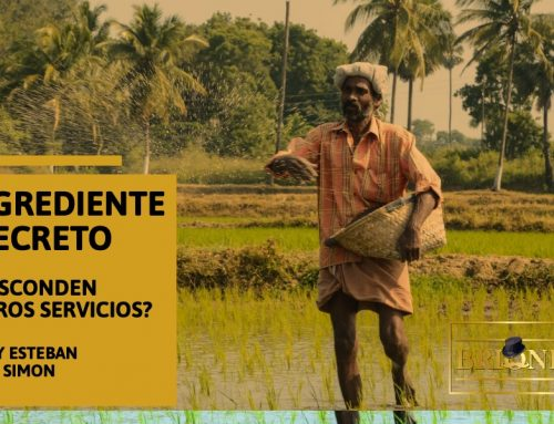 EL INGREDIENTE SECRETO PARA NUESTROS SERVICIOS , by ESTEBAN SIMON